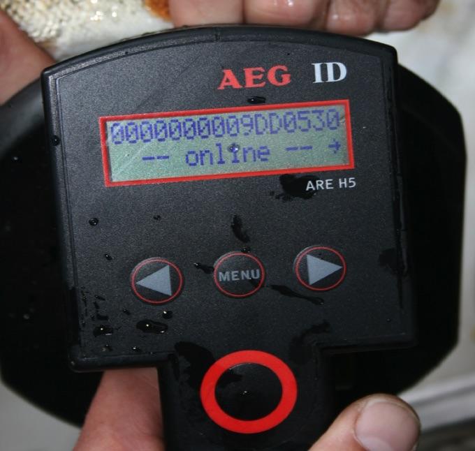 RFID, PIT tags, RFID readers | Fishtrack